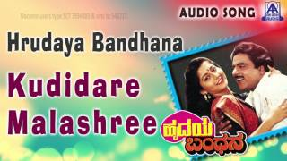 hrudaya bandhana quotkudidare malashreequot audio song ambareeshsudharani akash audio