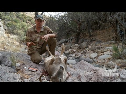 How To Field Dress A Deer With Steven Rinella - MeatEater