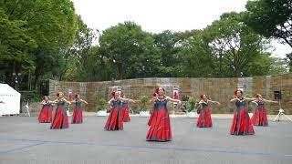 エキシビジョン フラダンスコレクション③/新宿中央公園/第5回 東京舞祭『秋』2018(初日)