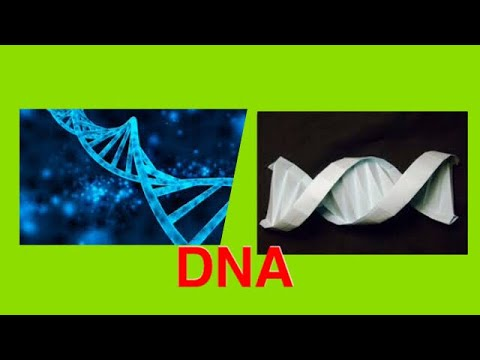 How to make cool Origami paper DNA.😊😊