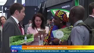 Участники со всего мира прибыли на ПМЭФ, чтобы обсудить вопросы экономики