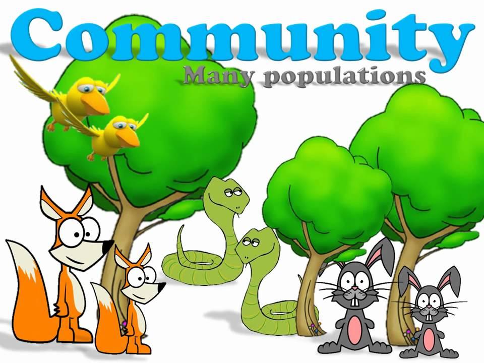 Ecology Introduction - YouTube