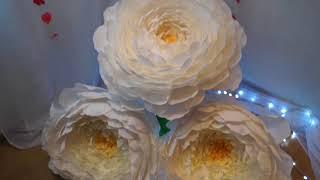 Больше пионы из бумаги, большие ростовые цветы