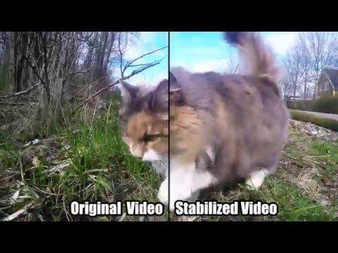 GoPro Tip: Video Stabilization - Reduce Shaky Footage