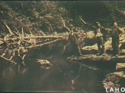 Savage Iron (1968)
