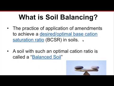 Effects of Soil Balancing Treatments on Soils, Crops and Weeds