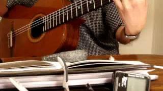 Đời Bỗng Phù Du, Từ Công Phụng, 1985. Guitar