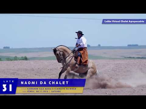 LOTE 31 - Naomi da Chalet