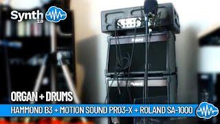 Motion Sound Pro3-X + Roland SA-1000 by Marco Balla