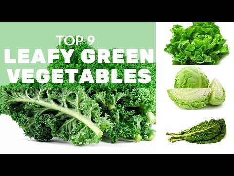 Top 9 Leafy Green Vegetables and Why You Should Eat Them