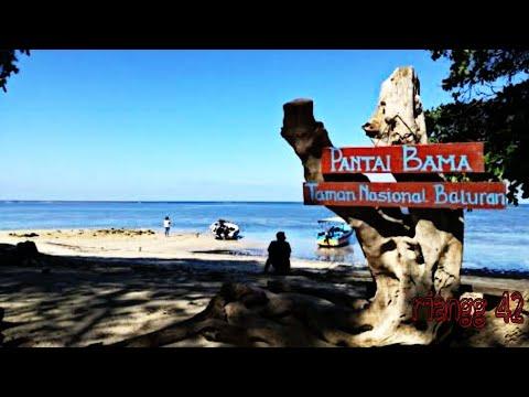 wisata-pantai-bama-baluran-situbondo-part-ii