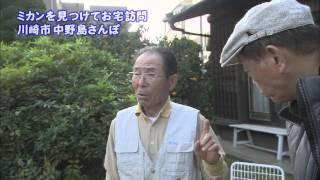 2011年12月6日 ちい散歩 中野島