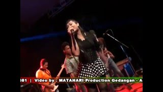 Video SAMBALADO BINTANG MUSIK ORKES PEKALONGAN download MP3, 3GP, MP4, WEBM, AVI, FLV Februari 2018