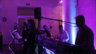 Blue Moon zespół na wesele - Mój Cygan