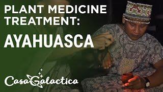 Ayahuasca - Plant Medicine Treatment - Ayahuasca Plant Spirit Healing Retreats Peru | Casa Galactica