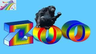 #zoo #зоопарк #видеодетям ZOO/ЗООпарк для детей/Учим животных в ЗООпарке/Развивающее видео для детей