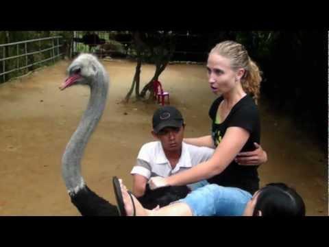 Riding an Ostrich!!