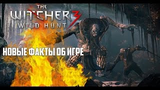 The Witcher 3 Wild Hunt. Больше подробностей