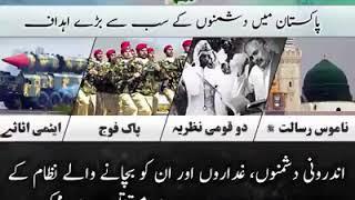 Pakistan zindabad pti zindabad