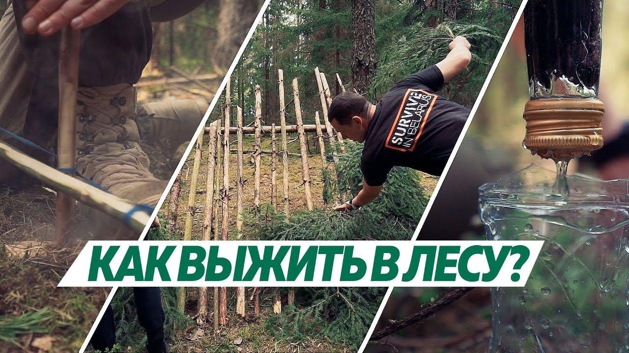 Как выжить в лесу: базовые навыки