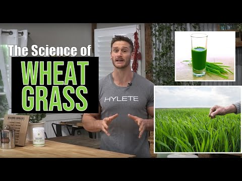 The Science of Wheat Grass, Why it's So Good for You -  Thomas DeLauer