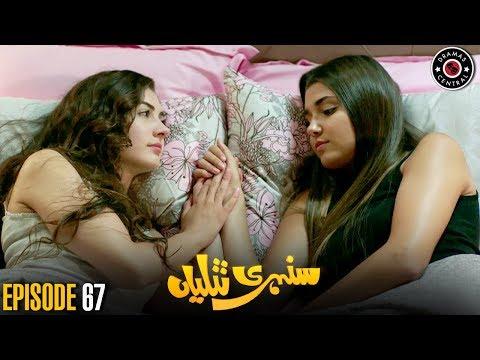 Sunehri Titliyan   Episode 67   Turkish Drama   Hande Ercel   Dramas Central