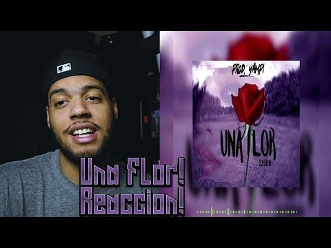 Una Flor - Ozuna ( Video Oficial ) reaccion