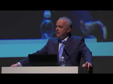 Fuel Choices and Smart Mobility Summit 2017 - MK Mr. Yuval Steinitz