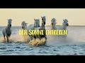 Kevin Neumann - Der Sonne Entgegen (offizielles Lyrikvideo)