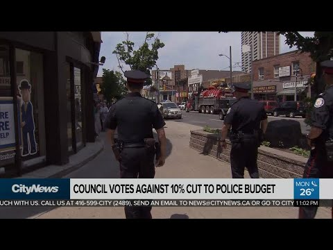 Council votes against 10 per cent cut to police budget