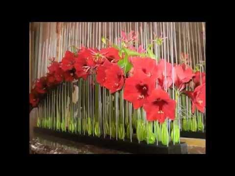 R aliser bouquet amaryllis doovi for Amaryllis deco