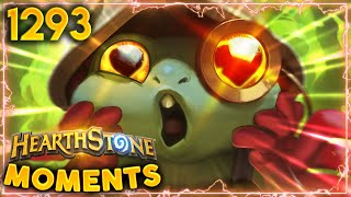 Should We Risk It...? OF COURSE WE SHOULD!!  | Hearthstone Daily Moments Ep.1293