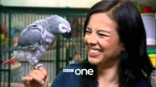 BBC One Junction - 2 February, 2012