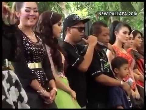 All artis New pallapa yatim piatu