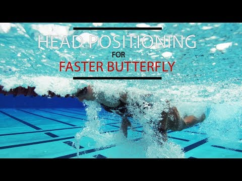 Head Position for a Faster Butterfly Mp3