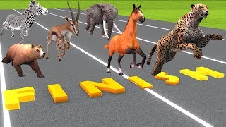 Animals Running Race Horse Race Videos For Kids | Animals Names And Sounds | Toys For Children