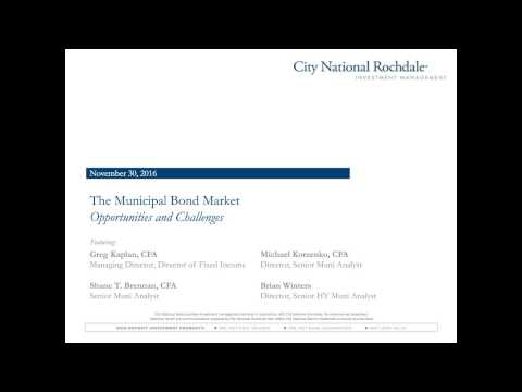 The Municipal Bond Market: Opportunities and Challenges