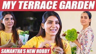 Samantha Video Tips on Zero Budget Terrace Gardening & organic farming