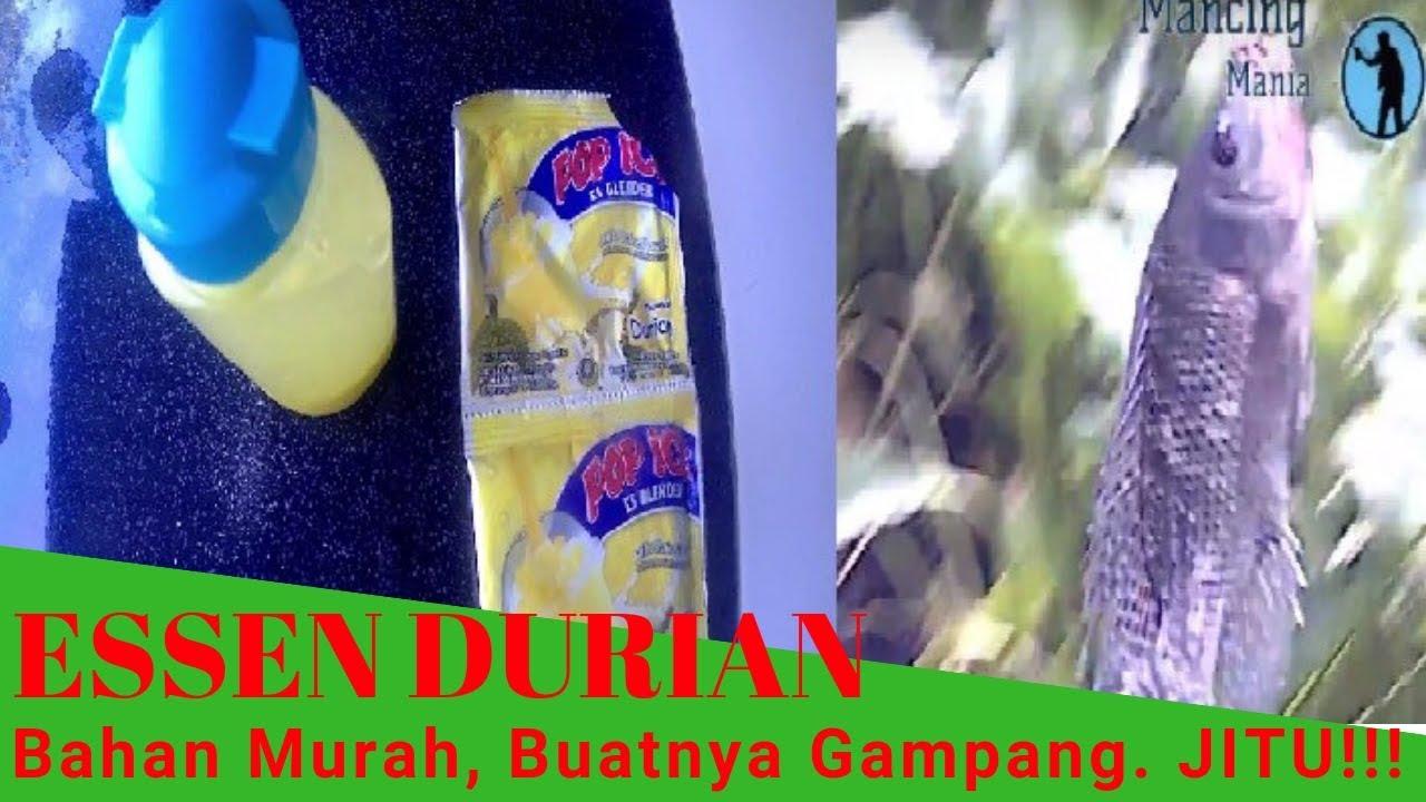 Cara Buat Essen Durian Murah Tapi Jitu Ikan Nila Ikan Mas Youtube