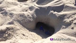 RIO Blue + Jewel Find a Nest! Nico Pedro Birds Movie Blue Sky by HobbyKidsTV