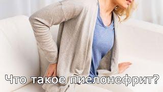 Что такое пиелонефрит? Пиелонефрит симптомы