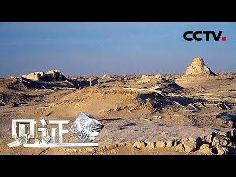 《见证》 20180427 大漠盗墓惊楼兰(上):为保护楼兰墓地的文物  一场围捕行动在罗布泊无人区展开 | CCTV社会与法