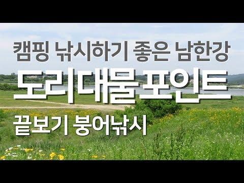 캠핑낚시 하기 좋은 남한강 도리 대물 포인트
