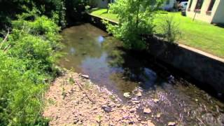 Cumberland River Compact Rain Gardens on Volunteer Gardener Thumbnail