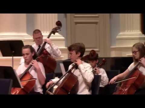 Concerto in B Minor, Op 2, No 8 III 2016 Alabama Honor Strings Festival