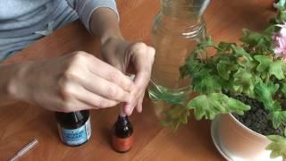 видео Супер-чудо удобрение для комнатных цветов, садовых и зелени