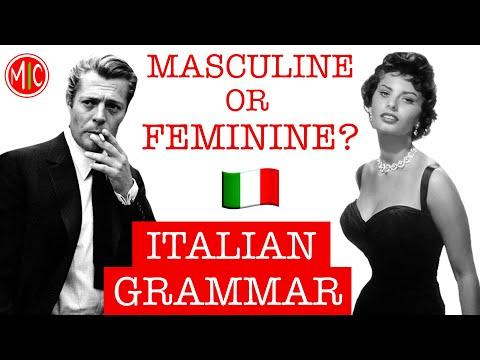 MASCULINE or FEMININE? Gender & Plural of Nouns   LEARN ITALIAN GRAMMAR