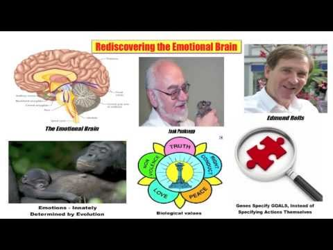 13 Rediscovering the Emotional Brain