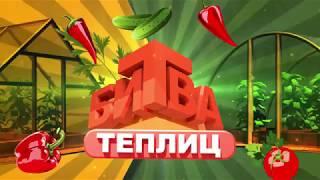 Битва теплиц. Сезон 2. Выпуск 2. Теплица Кремлевская(, 2017-05-17T13:46:46.000Z)