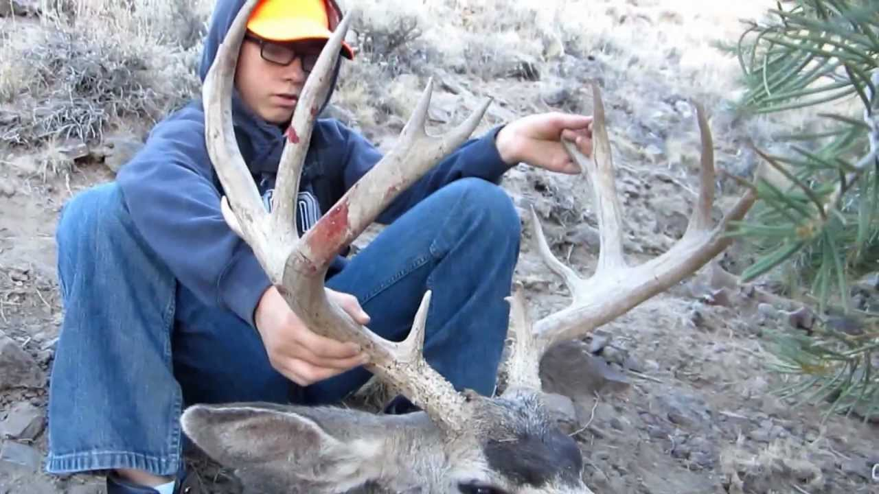 Deer-gun season is hunter holiday